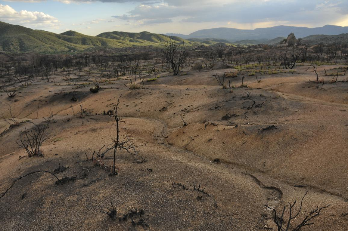 """Moonscape"" of burned chaparral"